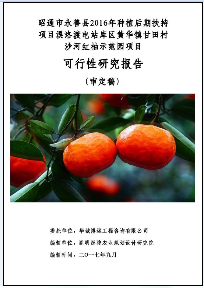 昭通永善红柚种植可研